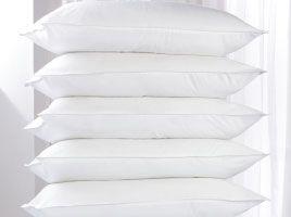 Bounce Back Pillow